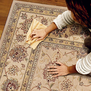 Removing Pet Stains from Antique Rugs