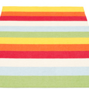 Plastic Rugs – All the Rage!